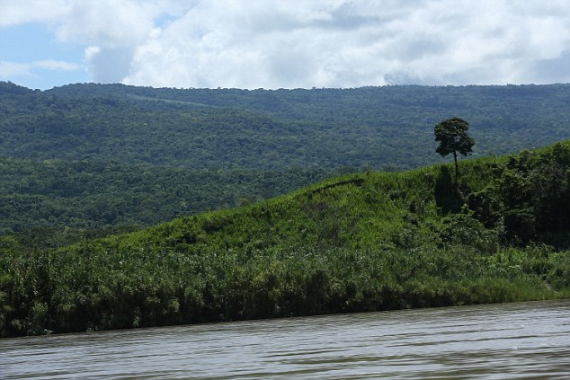 Location Shot Image of the jungle and river Rio Ene, Peru